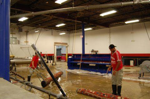rug cleaning williamsburg va